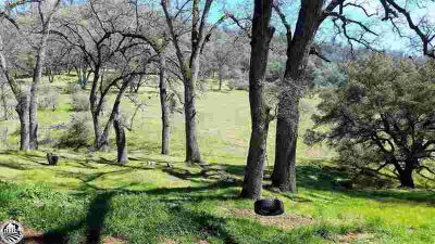 "19237 Buchanan Road Tuolumne, Beautiful remote ""off the"