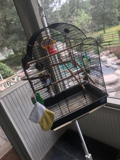 BIRD CAGE WITH HANGER. FOOD AND WATER DISPENSER AND LOTS OF TOYS
