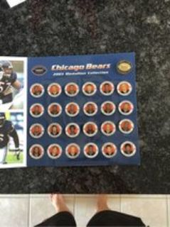 Chicago Bears 2003 Medallion Collection