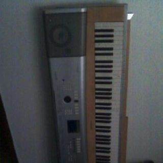 $100 OBO Electric Keyboard