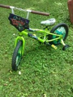 Boys Ninja Turtle Bicycle