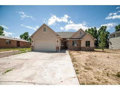3 Bed 2 Bath Foreclosure Property in Roosevelt, UT 84066 - Birch Ave