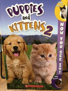 Puppies and Kittens 2