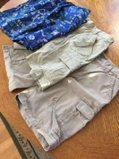 Boy's Shorts/Swim Suit