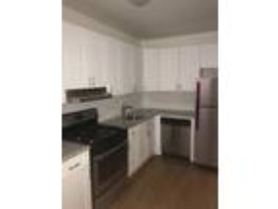 808 - 816 Forest Apartments - Three BR, Two BA