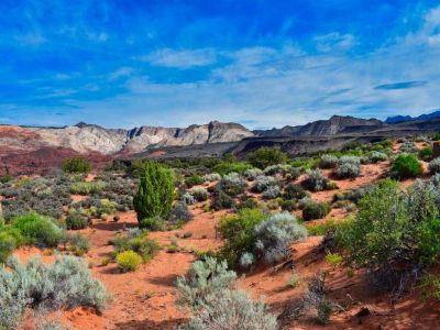 Land For Sale In Washington County, Ut
