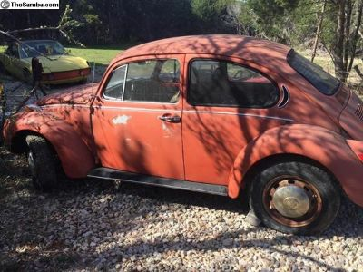 1972 Super Beetle Project