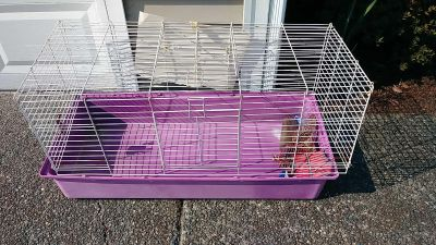 Guinea pig or bunny rabbit cage
