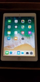 iPad Air 2 Mint condition.