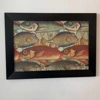 Giant Koi Fish Print - Framed