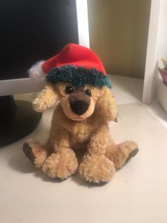 Jinglepup Beanie Baby with Hang Tag. Was displayed only