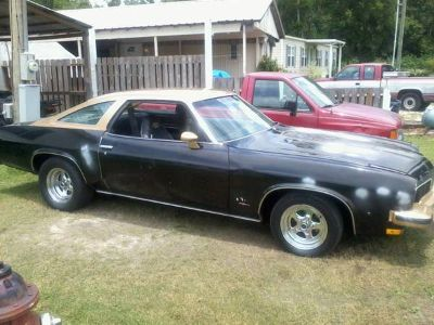 1973 OLDSMOBILE CUTLASS 442 MUSCLE CAR (GREAT CLASSIC FOR GREAT PRICE, in thibodaux,la)
