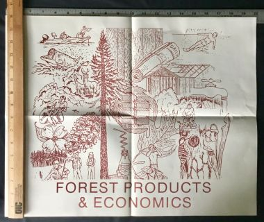 5 Forestry posters 16 (H)) X 20 (L)