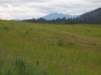 10xx Lot B Highway 395 Colville, Rectangular twenty acre