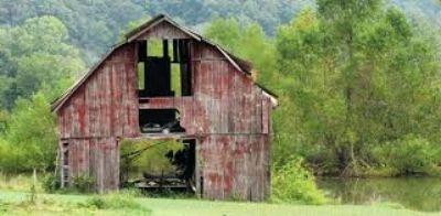 Barn Siding & Timbers