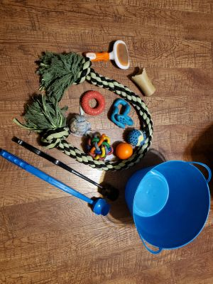 Dog stuff. Some chewed toys, huge rope, 2 ball throwers, brush...$5/all Appleton cp
