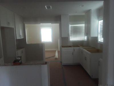 Drite handyman services