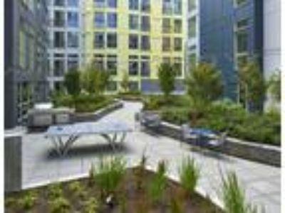 Bowman Apartments - B-10 2 BR/2 BA
