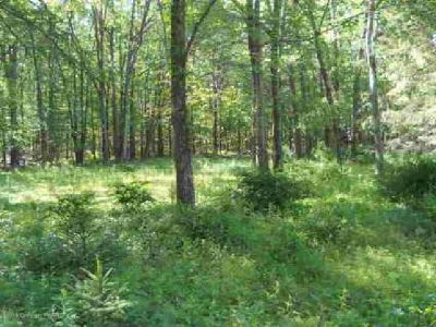 406 James Rd Effort, Build your vacation or primary home on