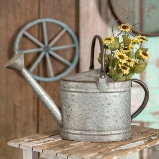 Large Galvanized Metal Oval Watering Can Pitcher