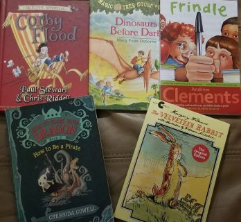 "Boys Books ""Adventures of Corby"", ""Dinosaurs Before Dark"",""Frindle"",""How to train Your Dragon"""