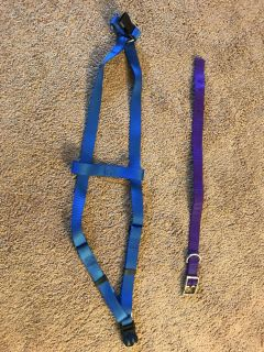 Extra Large dog harness and collar are 1 heavy webbing. Also have 5.7 foot horse rope leash.
