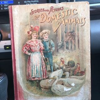 Copyright 1879 STORIES AND PICTURES OF DOMESTIC ANIMALS..... Hardback Children s Book