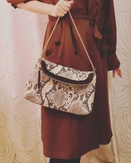 Snakeskin Cross Body Purse with Gold Chain Strap
