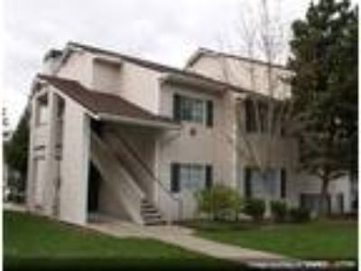Clearwater Ridge Apartments - 3 BR-2 BA