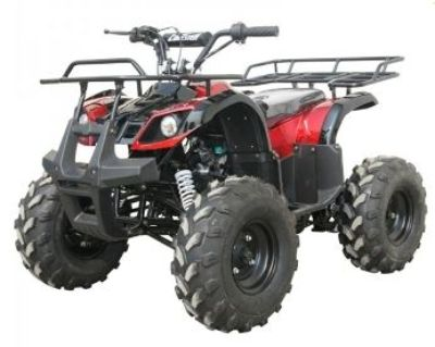 2016 Coolster ATV-3125XR8 ATV Utility Knoxville, TN