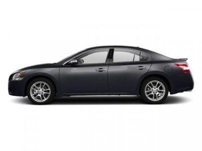 2011 Nissan Maxima 3.5 SV (Metallic Slate)
