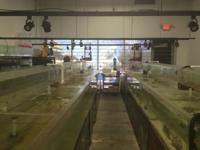 INDUSTRIAL AQUARIUMS