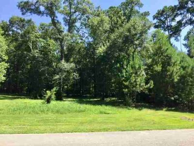14606 Chevelle Lane Willis, Beautiful 2 acre lot in the