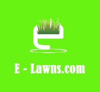 Are you sick of mowing the lawn on your day off?  Call E-Lawns now!