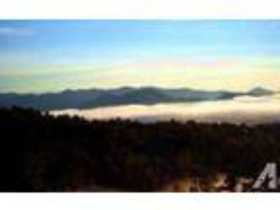 $650 / 3 BR - Fabulous cabins in the Smoky Mountains/what a