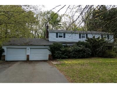 4 Bed 3 Bath Preforeclosure Property in Ballston Lake, NY 12019 - Wood Dale Dr
