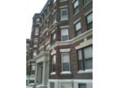 NO FEE! Commonwealth Ave Packards Corner! Newly renovated Four BR Two BA duplex!