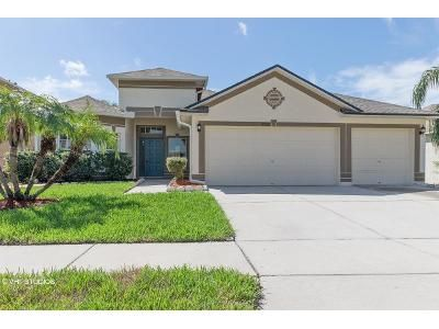 3 Bed 2 Bath Foreclosure Property in Riverview, FL 33579 - Hoffner Edge Dr