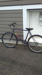 Adult bicycle