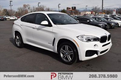 2019 BMW X6 (Alpine White)