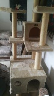 6 ft cat tower
