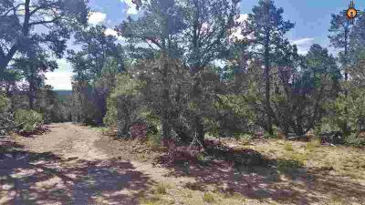 TBD Felsic Rd Grants, Great property just north of NM State