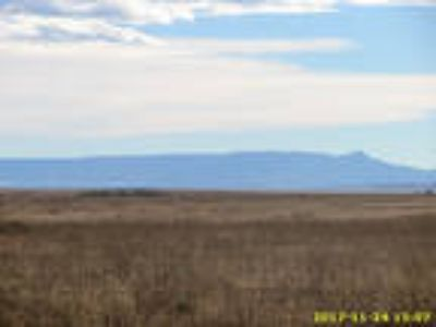 Colorado Land 75 Ac Pair of Ranches, Private Open Space