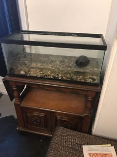 ISO of top for a 40gal long fish tank