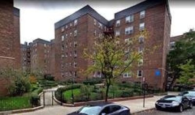 ID#: 1326478 Lovely 1 Br Apartment For Rent In Forest Hills