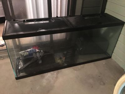 55 gallon fish tank with 3 water filters 120 gallon filter a 55 gallon filter and 25 gallon filter. The 120 gallon filter is missing a piece