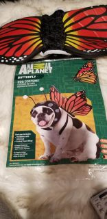 L Dog Butterfly costume ppu