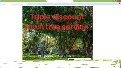 TRIPLE DISCOUNT LAWN SERVICE