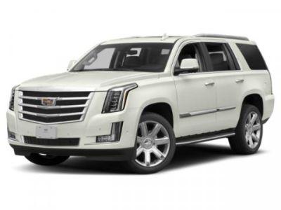 2019 Cadillac Escalade Platinum (Crystal White Tricoat)