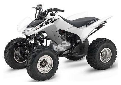 2017 Honda TRX250X ATV Sport Palatine Bridge, NY